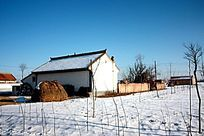 冬季的小院