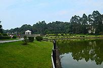 湖泊自然风景图片