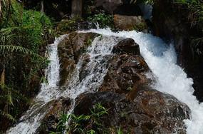 白水寨瀑布自然风景图片