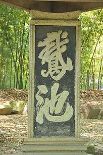 鹅池石碑特写