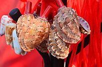 美丽的贝壳勺子工艺品