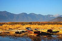 泸沽湖早晨木船秋季草海