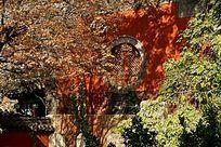 古建筑旁的红枫树