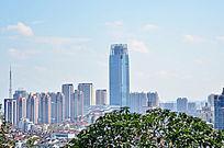 蓝天下的城市高楼大厦风景