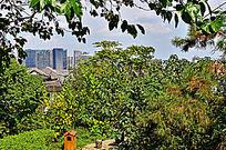 远处的城市高楼大厦建筑风景