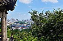 远处的城市建筑风景