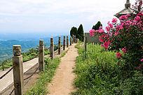 黑麋峰山顶小景
