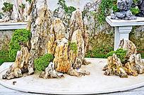园艺景观石头黑松摆件艺术摄影图片素材