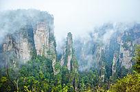 烟雨蒙蒙的张家界国家森林