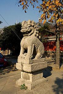 威武雄壮的石雕狮子