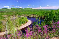 森林河湾杜鹃红