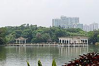 广州天河公园湖心亭