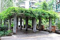 广州天河公园凉亭