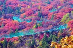 斑斓的山峰秋色