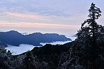 神农架清晨雪霜
