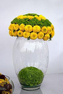 透明花瓶中的菊花球