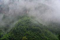 雨后云雾升腾的山川植被