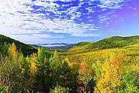 秋季山林云海风景