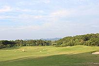 广阔的高尔夫球场
