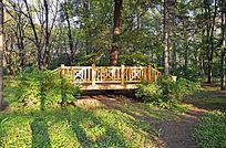 林间独木桥