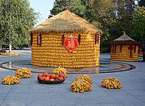 玉米大粮仓