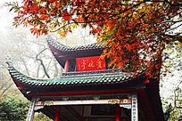 红色枫叶下的爱晚亭细节摄影图
