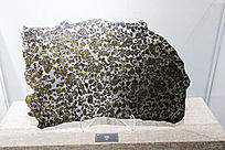 新疆橄榄陨石