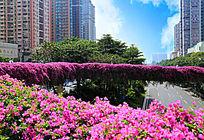 珠江新城花城汇