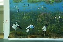 壁画墙绘仙鹤