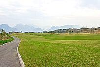 高尔夫球场草地