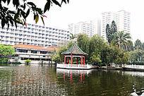 暨大明湖风景