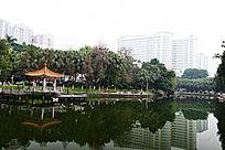 暨大南湖风景