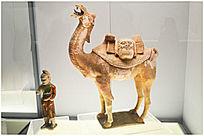 近摄唐三彩胡人牵骆驼俑