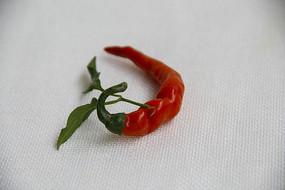 绿叶红辣椒