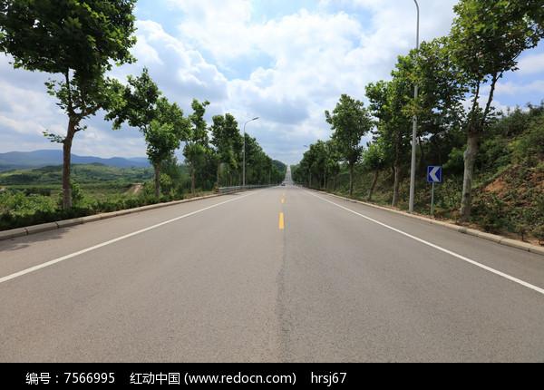 蓝天白云下绿树成荫的公路