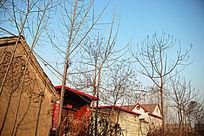 梧台村落风景