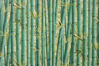 绿竹背景墙