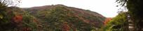 大山美景-秋季红叶景观