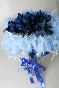 好看的蓝色妖姬花
