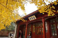 秋天的香山涵碧斋