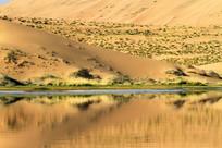 沙漠湖泊风光