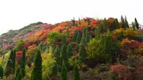 彩色的山岭高清图