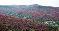 彩色的山脉连绵起伏