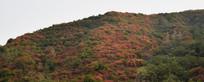 长寿山秋季景观摄影