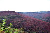 红色的山岭高清图