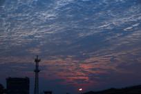 日出魅蓝剪影