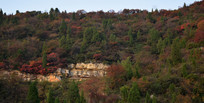 山脉植被景观摄影