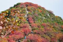 长寿山秋季山景