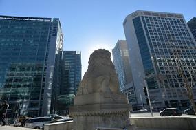 石狮与中国人寿大厦