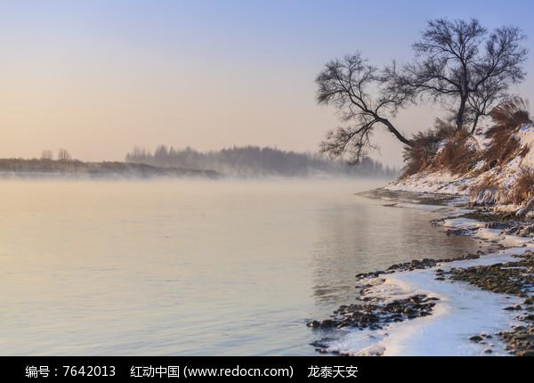 雾凇岛晨雾树木积雪图片